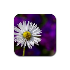 Daisy Drink Coaster (square)
