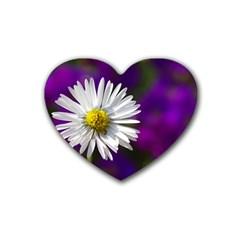Daisy Drink Coasters (Heart)