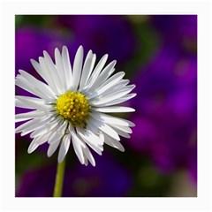 Daisy Glasses Cloth (medium)