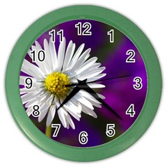 Daisy Wall Clock (Color)