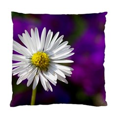 Daisy Cushion Case (two Sided)