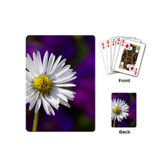 Daisy Playing Cards (mini)