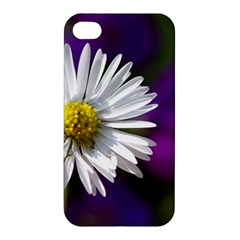 Daisy Apple iPhone 4/4S Hardshell Case