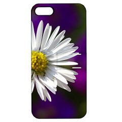 Daisy Apple iPhone 5 Hardshell Case with Stand