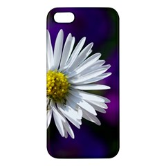 Daisy Iphone 5 Premium Hardshell Case