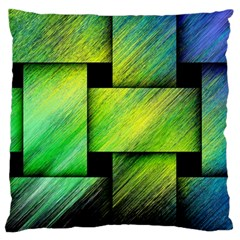 Modern Art Large Cushion Case (Two Sided)