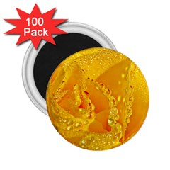 Waterdrops 2.25  Button Magnet (100 pack)