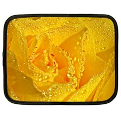 Waterdrops Netbook Case (XXL)