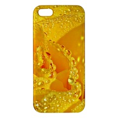 Waterdrops iPhone 5S Premium Hardshell Case