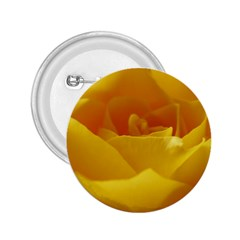 Yellow Rose 2.25  Button