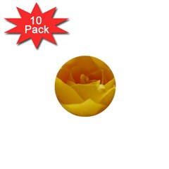 Yellow Rose 1  Mini Button (10 pack)