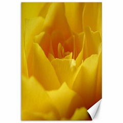 Yellow Rose Canvas 12  x 18  (Unframed)