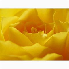 Yellow Rose Canvas 18  x 24  (Unframed)