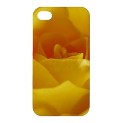 Yellow Rose Apple iPhone 4/4S Premium Hardshell Case