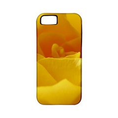 Yellow Rose Apple iPhone 5 Classic Hardshell Case (PC+Silicone)