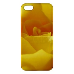 Yellow Rose Iphone 5s Premium Hardshell Case