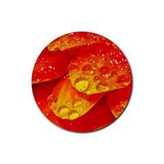 Waterdrops Drink Coaster (Round)