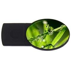 Waterdrops 2GB USB Flash Drive (Oval)