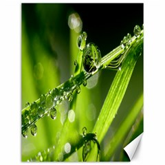 Waterdrops Canvas 12  X 16  (unframed)
