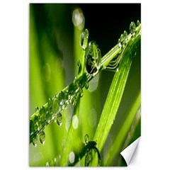 Waterdrops Canvas 12  x 18  (Unframed)