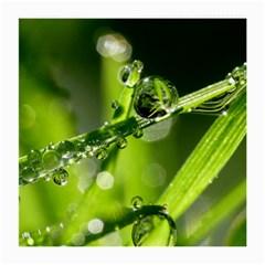 Waterdrops Glasses Cloth (Medium)