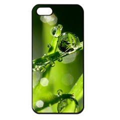 Waterdrops Apple iPhone 5 Seamless Case (Black)