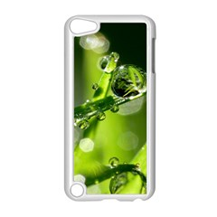 Waterdrops Apple iPod Touch 5 Case (White)