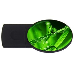 Waterdrops 2GB USB Flash Drive (Oval)