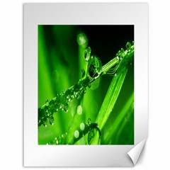 Waterdrops Canvas 36  X 48  (unframed)