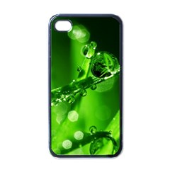 Waterdrops Apple iPhone 4 Case (Black)