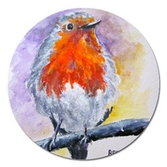Robin Red Breast Magnet 5  (round)