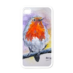 Robin Red Breast Apple iPhone 4 Case (White)
