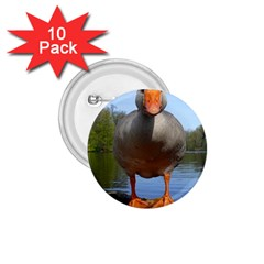 Geese 1.75  Button (10 pack)