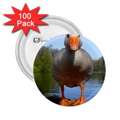 Geese 2.25  Button (100 pack)