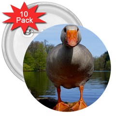 Geese 3  Button (10 Pack)