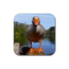 Geese Drink Coaster (Square)