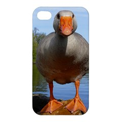 Geese Apple iPhone 4/4S Hardshell Case