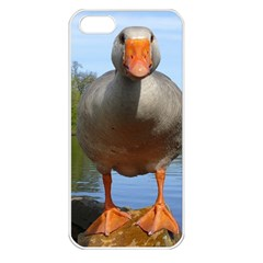 Geese Apple Iphone 5 Seamless Case (white)