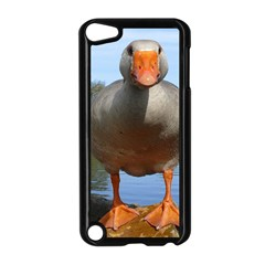 Geese Apple iPod Touch 5 Case (Black)