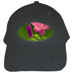 Campanula Close Up Black Baseball Cap