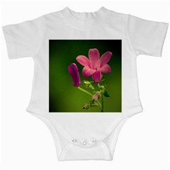 Campanula Close Up Infant Bodysuit