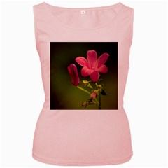 Campanula Close Up Womens  Tank Top (Pink)