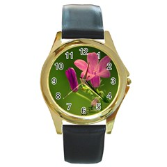 Campanula Close Up Round Metal Watch (Gold Rim)
