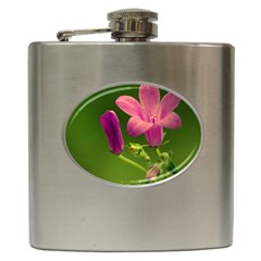 Campanula Close Up Hip Flask