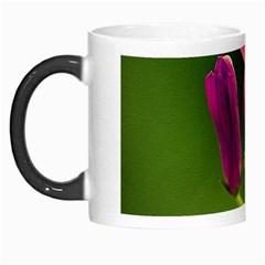 Campanula Close Up Morph Mug
