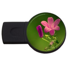 Campanula Close Up 4GB USB Flash Drive (Round)