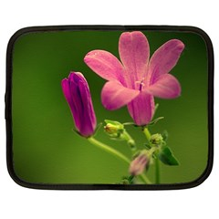 Campanula Close Up Netbook Case (large)