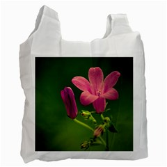 Campanula Close Up Recycle Bag (one Side)