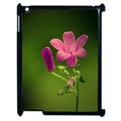 Campanula Close Up Apple Ipad 2 Case (black)