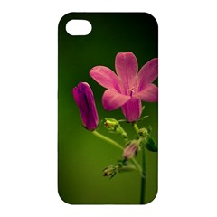 Campanula Close Up Apple iPhone 4/4S Hardshell Case